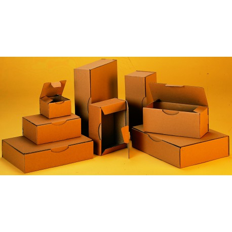 Boîte petit format kraft pc 10 bp 25 x 20 x 10 cm