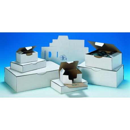 Boîte petit format blanche pc10 blanc 25 x 15 x 10 cm