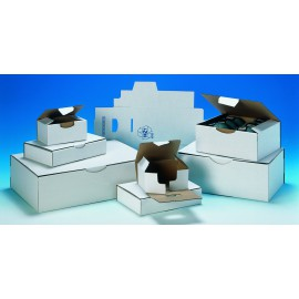 Boîte petit format blanche pc10 blanc 25 x 20 x 10 cm
