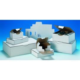 Boîte petit format blanche pc10 blanc 35 x 22 x 13 cm